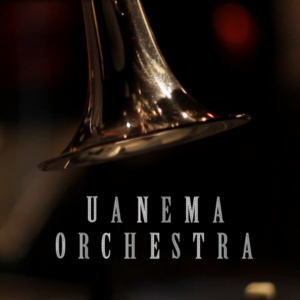Uanema Orchestra - tromba - Ciro Riccardi